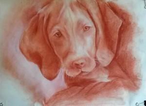 Dibujo a las tres tizas, dibujo trois crayons, metodo giotto, cursos de dibujo y pintura , animal