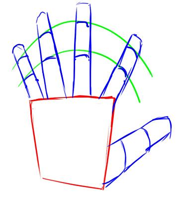 cómo dibujar manos 4
