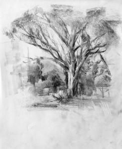 paisaje al carboncillo aprender a dibujar dibujo online