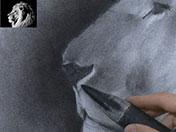 <strong>10 </strong>Funde con el difumino las zonas oscuras, para crear una mancha uniforme y homogénea.