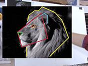 <strong>3 </strong>Simplifica las formas observadas mediante formas geométricas simples.