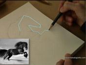<strong>3 </strong>Define  por segmentos el contorno externo del caballo.