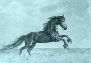 5 Dibuja un animal mediante tramas